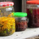 Kräuterwerkstatt Heilpflanzen: Die grüne Hausapotheke