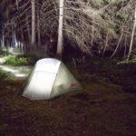 Die Schwarz-Wald-Nacht! - Eine Nacht im Wald